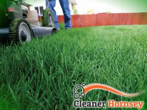 grass-cutting-services-hornsey