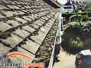 gutter-cleaning-hornsey
